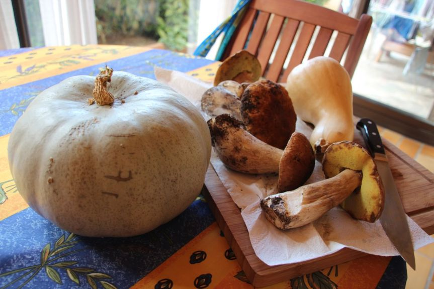 Pumpkin soup and Wild mushroom risotto